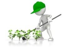 Дипломная работа сельское хозяйство Дипломные по сельскому хозяйству Выполним дипломную работу вкр по сельскому хозяйству
