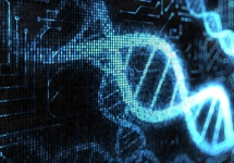 Биоинженерия и биоинформатика