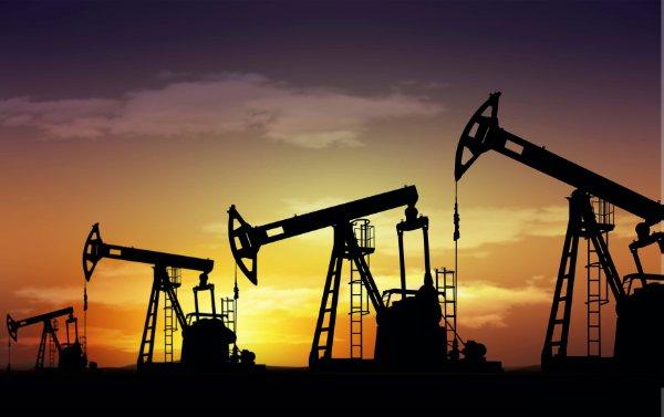 Дипломная работа нефтегазовое дело 3890